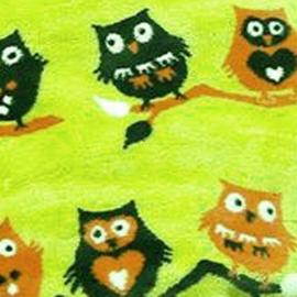 Конверт Buggysnuggle Twit Twoo Owl Lime /искусственный мех
