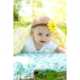 Пеленка детская тонкая SwaddleDesigns Маркизет Yellow Chevron