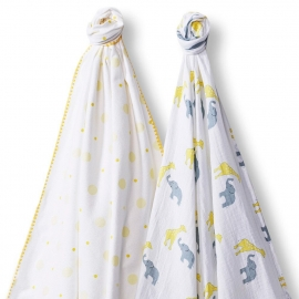 Набор пеленок SwaddleDesigns Swaddle Duo YW Circus Fun
